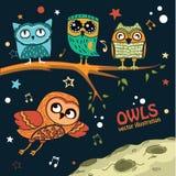 Inzameling van uilen in de nacht stock illustratie