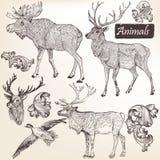 Inzameling van vectorhand getrokken dieren in uitstekende stijl Stock Fotografie