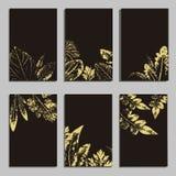 Inzameling van vectormalplaatjeetiket, bezoekkaarten, vierkante groetkaarten en banners met huisinstallaties, wilde bloemen en vector illustratie