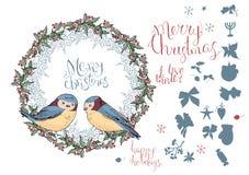 Inzameling van verschillende de wintervogels vector illustratie