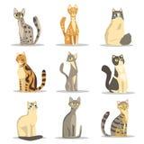 Inzameling van verschillende kattenrassen, leuke huisdier vectorillustraties vector illustratie