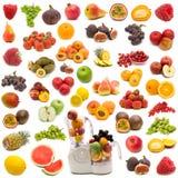Inzameling van verse sappige vruchten Stock Foto