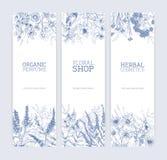 Inzameling van verticale die banners met wilde bloemen en de bloeiende die hand worden verfraaid van weidekruiden met contourlijn vector illustratie
