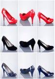 Inzameling van vrouwenschoenen Stock Afbeeldingen