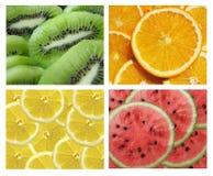 Inzameling van vruchten stock foto