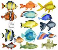 Inzameling van waterverf oceanic vissen stock illustratie