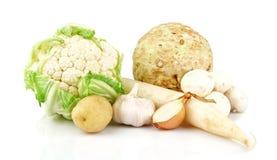 Inzameling van witte groenten Stock Foto