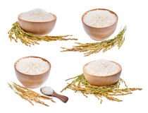 Inzameling van witte rijst en unmilled rijst die op wit wordt geïsoleerd Royalty-vrije Stock Afbeeldingen