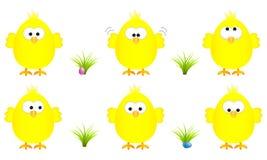 Inzameling van zes grappige gele Pasen-kuikens met verscheidene uitdrukkingen, vectorillustratie Royalty-vrije Stock Afbeeldingen