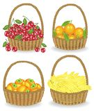 inzameling Verzamelde een rijke oogst de mand van rijp sappig fruit volledig is Verse bananen, sinaasappelen, dadelpruimen, kerse stock illustratie