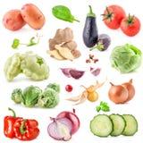 Inzamelingen van groente Stock Foto
