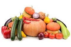 inzamelings verse groenten Stock Afbeeldingen