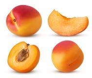 Inzamelings verse rijpe abrikoos, geheel, plak, besnoeiing in de helft met BO stock foto
