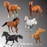 Inzamelingspaarden van Verschillende Rassen Vector geïsoleerde paarden op gradiëntachtergrond royalty-vrije illustratie