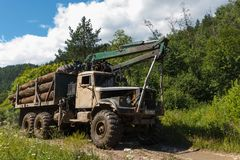 Inzer, Russia - July 19, 2014: KrAZ machine for logging with logs in forest on sunny summer day royalty free stock image
