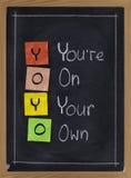 Io-io - você está no seus próprios Fotografia de Stock