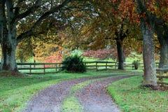 Iocalweg in Nieuw Zeeland stock fotografie