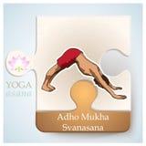 IOGA Asana Adho Mukha Svanasana Fotos de Stock