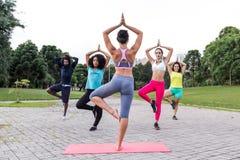 A ioga classifica fora com grupo multirracial no physic diferente fotos de stock