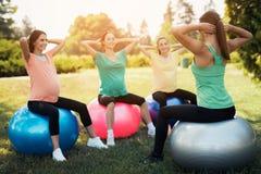 Ioga da gravidez Três mulheres gravidas na ioga no parque Fazem os exercícios com o treinador Foto de Stock Royalty Free