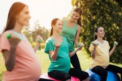 Ioga da gravidez Três mulheres gravidas são contratadas na aptidão no parque Sentam-se em bolas para a ioga Foto de Stock