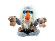 Ioga do macaco Foto de Stock