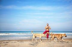Ioga e cães imagens de stock royalty free