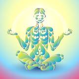 Ioga Lotus Fotografia de Stock Royalty Free
