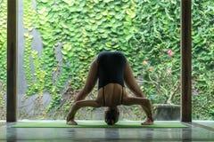 ioga praticando da jovem mulher apta na pose dianteira da curvatura (Uttanasana) na frente da parede coberta com as folhas verdes foto de stock royalty free