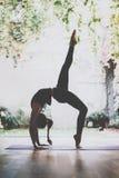 Ioga praticando da jovem mulher lindo interna Adkho-mukkha-shvanasana bonito da prática da menina em um salão do treinamento Calm Imagem de Stock Royalty Free