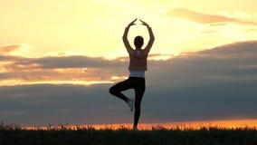 Ioga praticando da silhueta da jovem mulher no prado no por do sol A menina com uma figura delgada pratica a ioga no por do sol video estoque