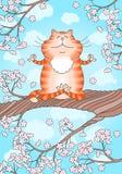 Ioga praticando do gato Imagens de Stock