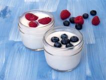 Iogurte caseiro com bagas imagens de stock royalty free