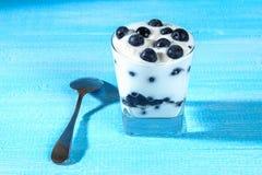 Iogurte com as bagas azuis da ameixoeira-brava em um vidro Framboesa do gelado da baga dessert fotos de stock royalty free