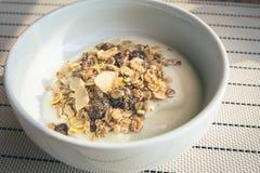 Iogurte com cereais e grões Fotografia de Stock