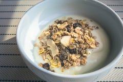 Iogurte com cereais e grões Imagens de Stock Royalty Free