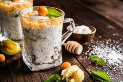 Iogurte com puré do chia, do coco, do mel e do physalis Imagem de Stock Royalty Free