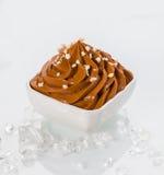 Iogurte congelado Brown na bacia com coberturas pequenas Imagens de Stock