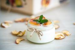 Iogurte doce home com frutos secos Imagens de Stock Royalty Free