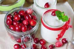 Iogurte fresco com arandos Fotografia de Stock