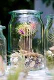 Ionantha del Tillandsia con los flores Imagenes de archivo