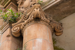 Ionic capital Royalty Free Stock Photo