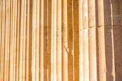 Ionic column background Stock Image