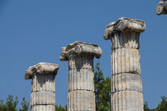 Ionic columns Temple of Athena Royalty Free Stock Images