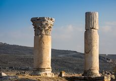 Ionic order, column in ancient Olympia. Ionic order, column in the ancient Olympia royalty free stock photography