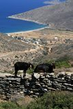 Ios eiland, Griekenland royalty-vrije stock foto's
