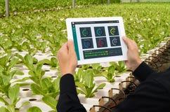 Iot巧妙的产业机器人4 0个农业概念,工业农艺师,使用片剂的农夫监测,在ve控制条件 免版税库存图片