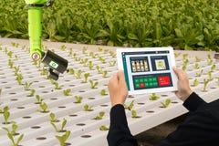 Iot巧妙的产业机器人4 0个农业概念,工业农艺师,使用软件人工智能技术的农夫  免版税库存图片