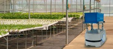 Iot聪明的农业产业4 红颜色的词位于在白色颜色文本 聪明机器人在未来派的农业,机器人农夫自动化编程了对wor 库存图片