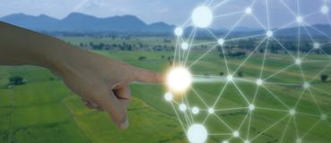Iot, Internet das coisas, conceito da agricultura, uso robótico esperto do ai da inteligência artificial para a gestão, controle, imagens de stock royalty free